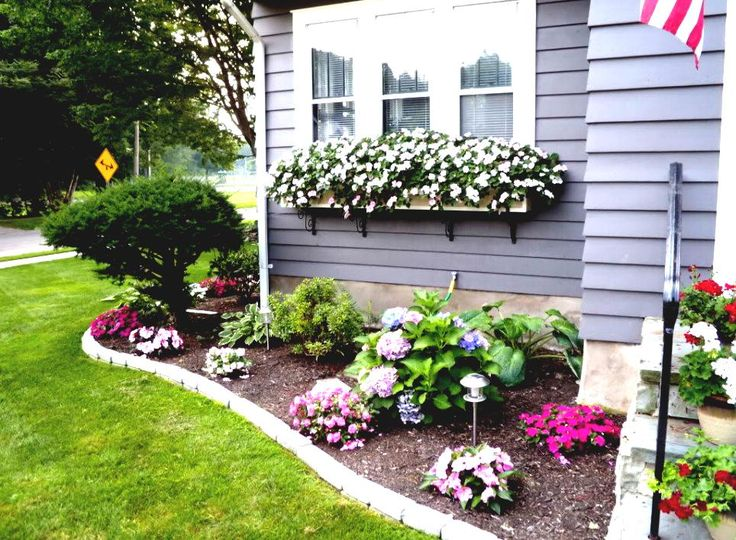 Expert Landscaping Tips to Add Beauty to Your Garden