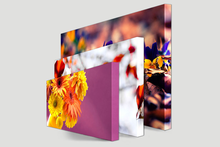Canvas Prints for your Home