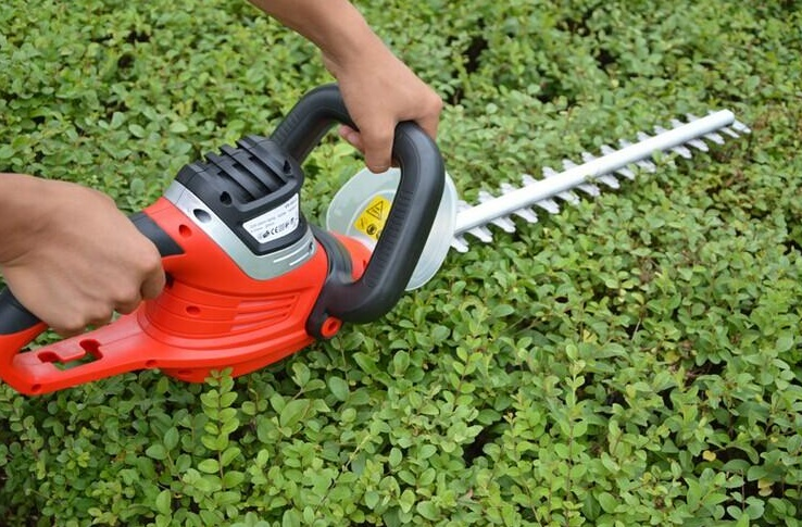 How to Choose The Best Hedge Trimmer?